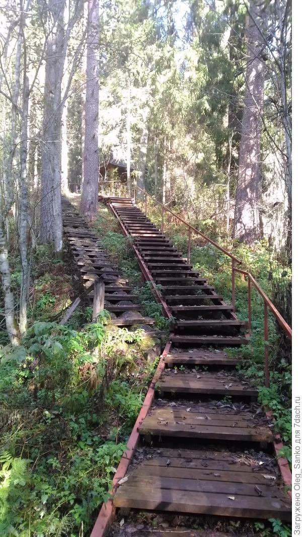 Две лестниицы с разным шагом ступенек. Какая лучше?