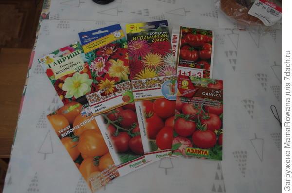 Красота пока ещё прорастает. Георгины повылазили, а томаты только начинают.