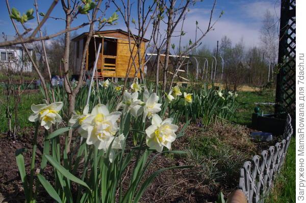 Весна, весна на улице!