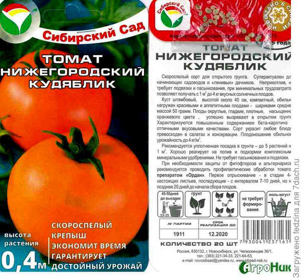 Нижегородский Кудяблик