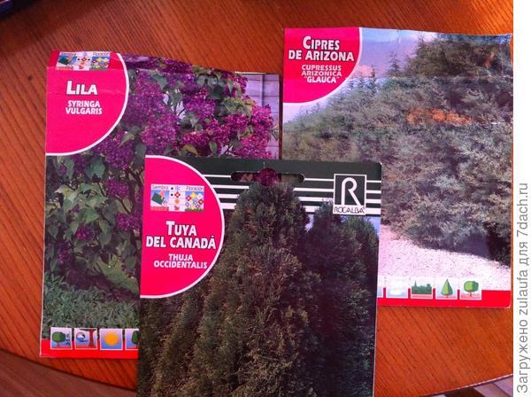 семена из Испании