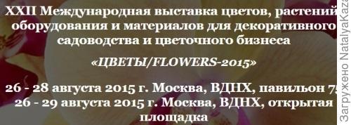Цветы/Flowers 2015