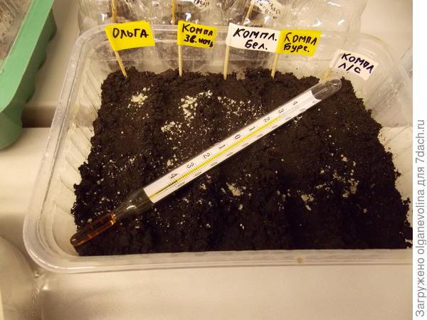 Определение температуры на поверхности почвы.