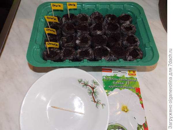 Посев семян в таблетки.