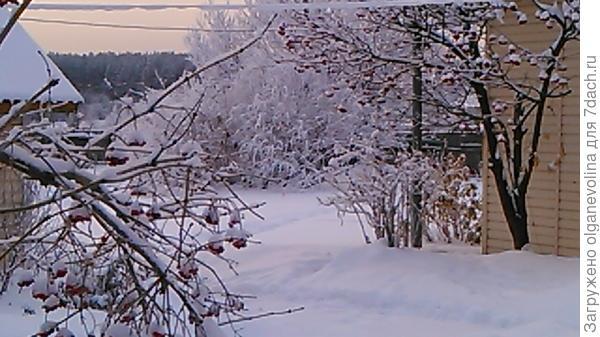 В начале марта снега было немного.