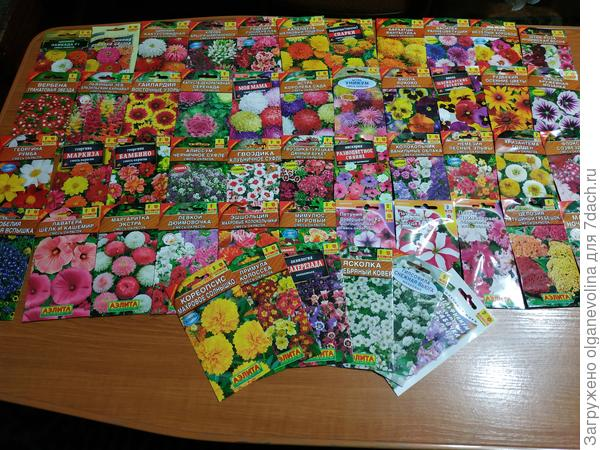 44 пакета однолетних цветов и 6 пакетов с многолетними.