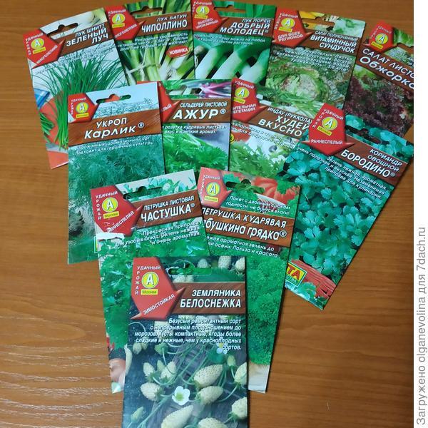 Зелены овощи.Витаминная грядка!