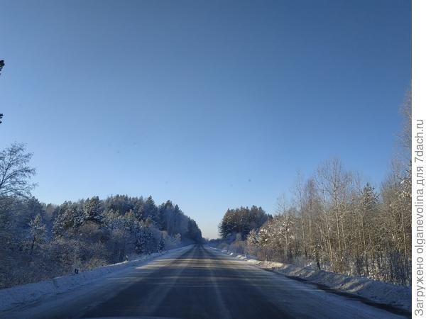 Стоят солнечные дни с легким морозцем., что для декабря  - редкость.