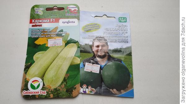 Семена арбуза и кабачка