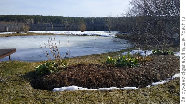 К началу апреля снег почти стаял, установилась теплая погода.