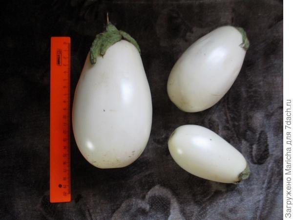 Размер плода -
