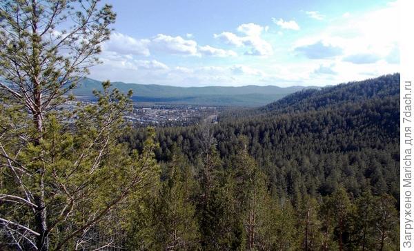 Большая часть территории республики покрыта лесами