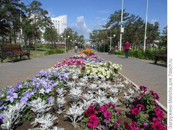 Один из городских парков