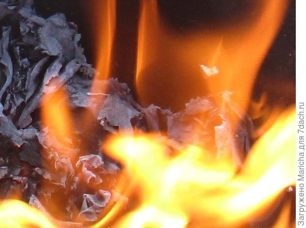 Ветер разжигал огонь