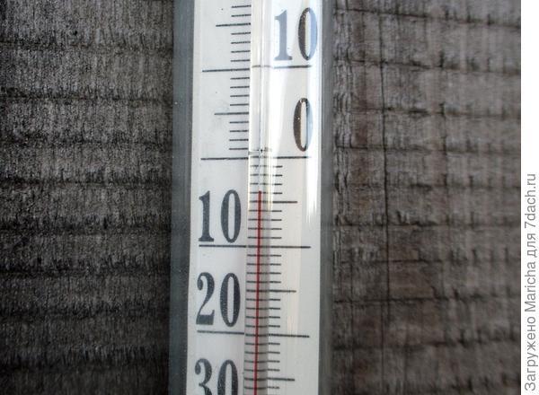 Заморозки. 24 сентября