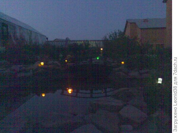прудик ночью