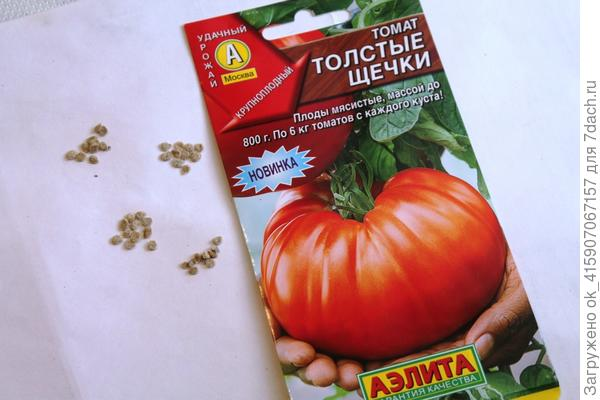 Семена томата Толстые щёчки.