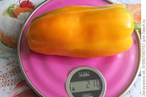 вес впечатляет