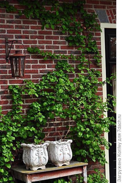 Оформление балконов и террас 11