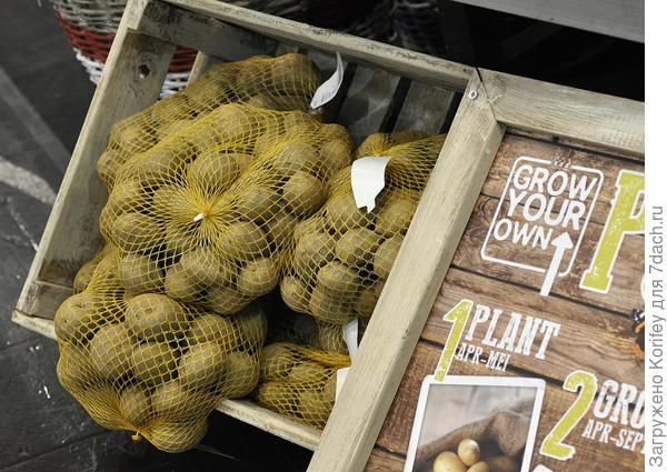 Упакованная картошка