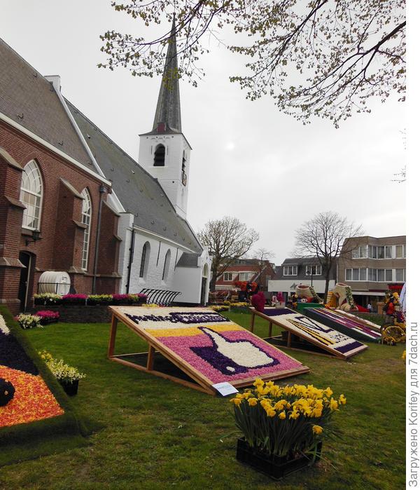 Парад цветов проходит во многих городах Голландии