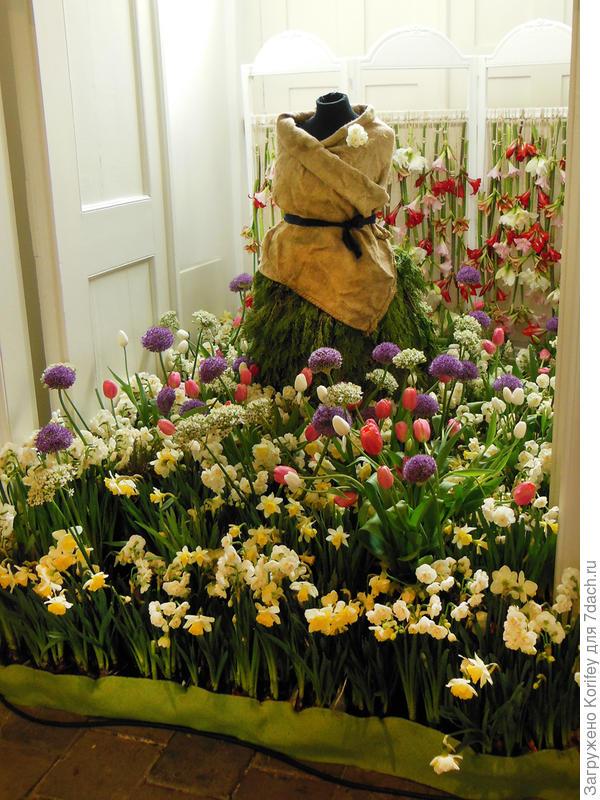 В ход идут любые луковичные цветы - и амариллисы, и нарциссы, и декоративные луки с тюльпанами