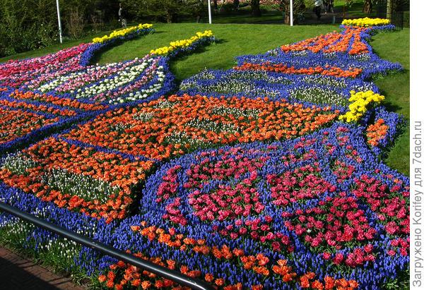 Или просто огромная клумба - панно Храм Василия Блаженного, сложенная их ранних махровых тюльпанов и мускари различных расцветок