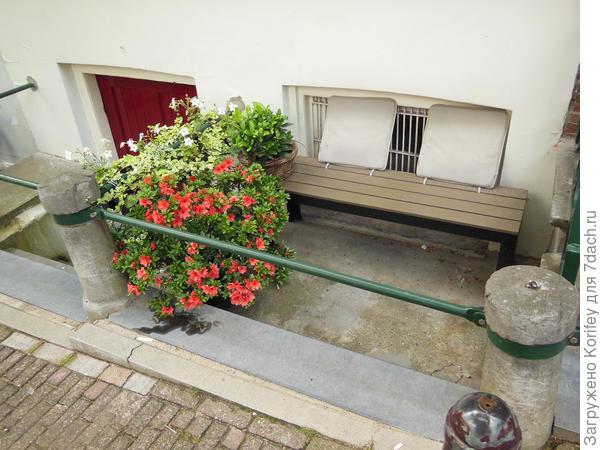 Даже если почти нет совсем дворика, а только небольшая скамейка и вход в полуподвальное помещение, то и это место можно достаточно красиво и просто облагородить
