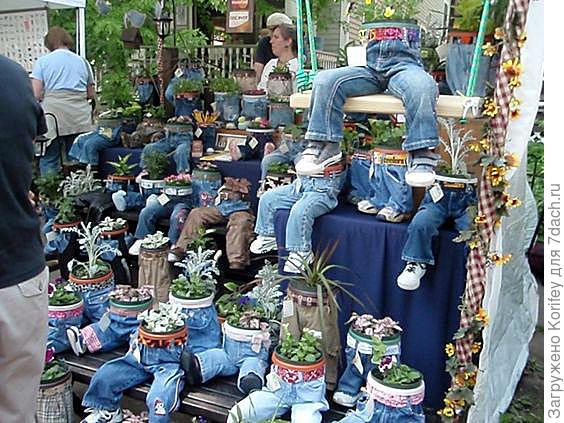 Горшки и красивые растения в детских штанишках