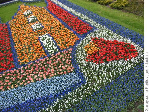 В принципе, из весенних луковичных можно сложить любое панно или любую мозаику