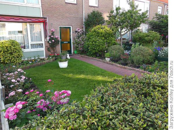 Типичный голландский дворик с разными розами, луковичными и многолетниками