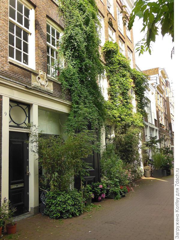 Даже в больших городах на самых узких улочках часто можно встретить вот такой красивый авторский сад