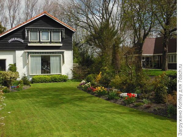 Люые луковичные всегда будут идеально смотреться на фоне аккуратно стриженного газона и ухоженного домика