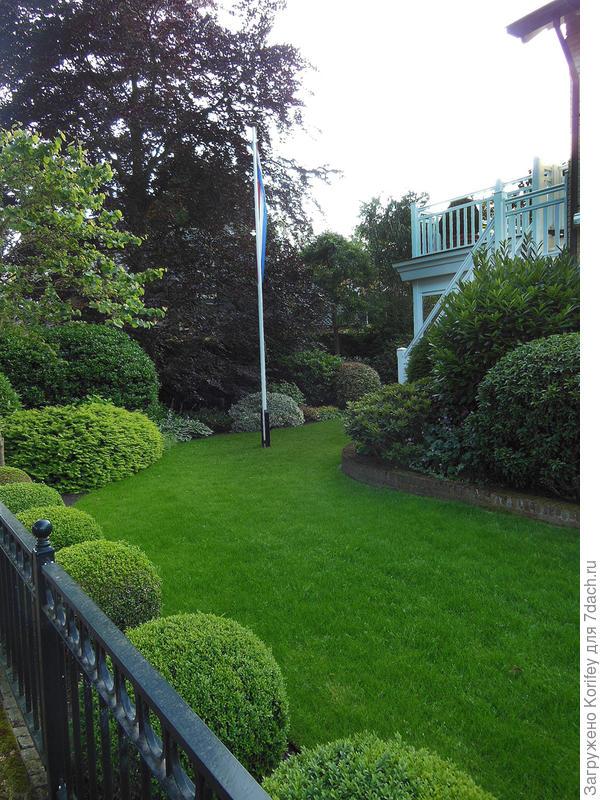 Просто красиво и аккуратно стриженный газон с аккуратно стриженными формами смотрится всегда элегантно