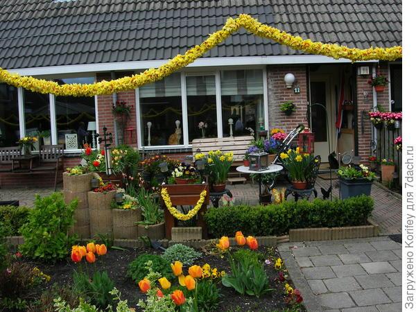 Вот так голландцы украшают свой двор на праздники