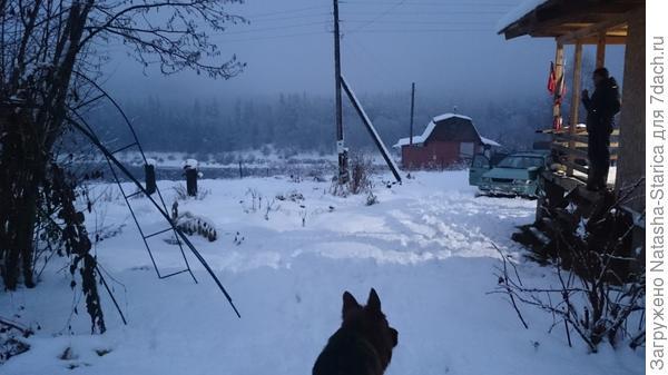 Мартюшка рад снегу