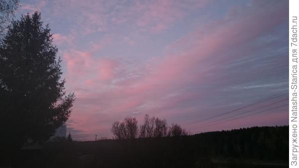 Розовое на фиолетовом
