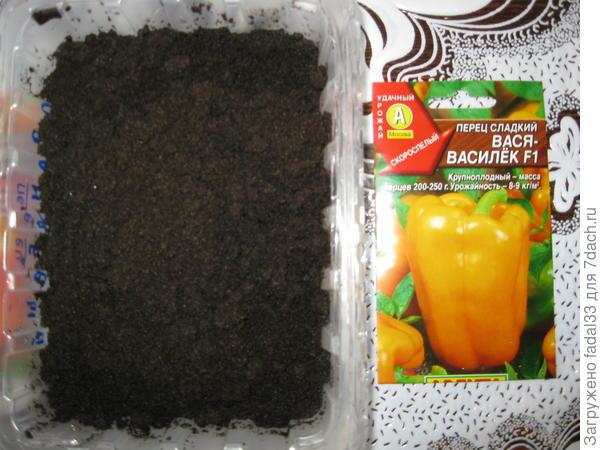 Семена высаживаем в землю