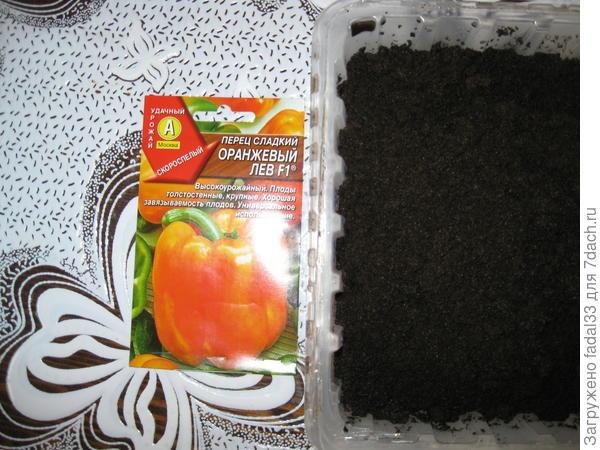 Семена в земле