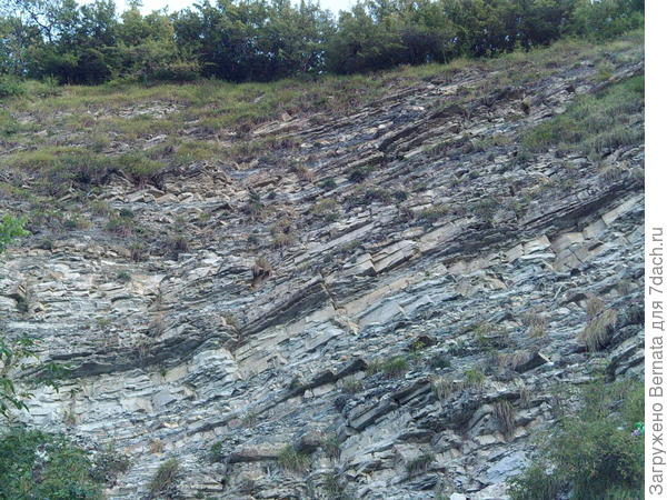 почвы  Новороссийска