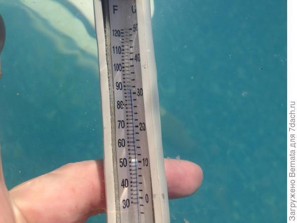В бассейне +32
