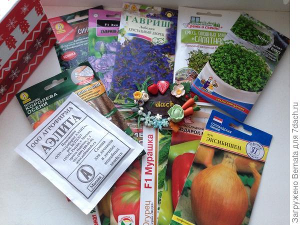 Целая коллекция семян, из тех, что Катя сеяла у себя и ей понравились...