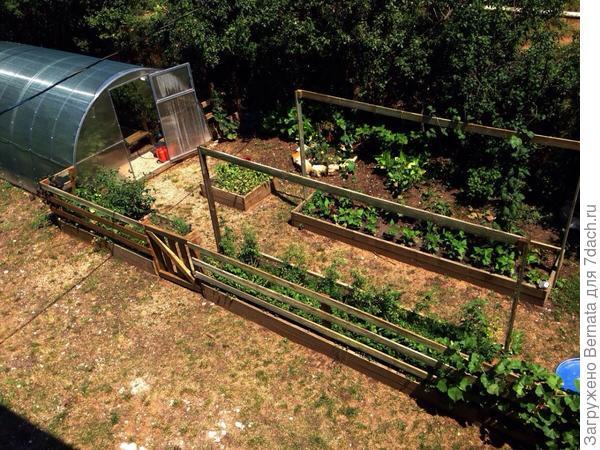 """Тень такие """"рамки"""" не дают, но очень удобные даже если не натягивать сетку, а просто подвязывать те же помидоры."""