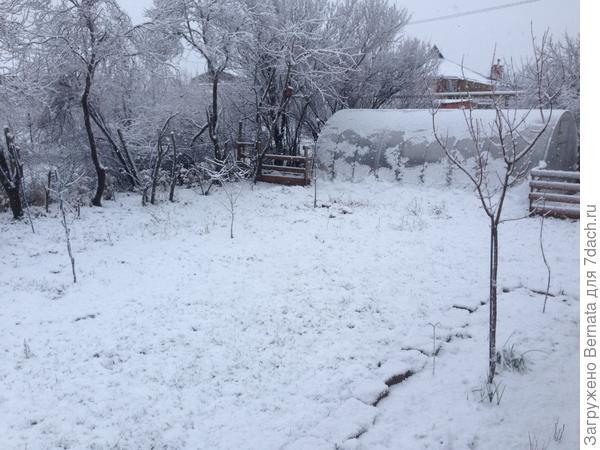 Много-много снега:)