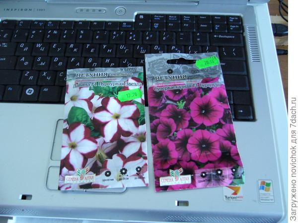 Вот такие семена были куплены весной 2016 г