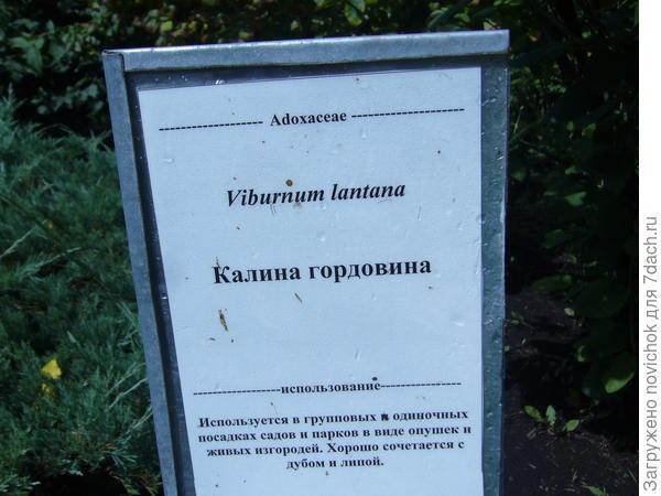 это шпаргалка )))