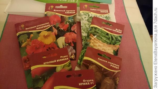 Семена из магазина
