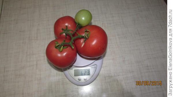помидоры Малиновый Закат