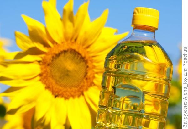 источник изображения: shutterstock.com