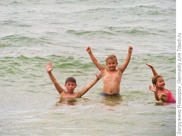 море на Куршской косе